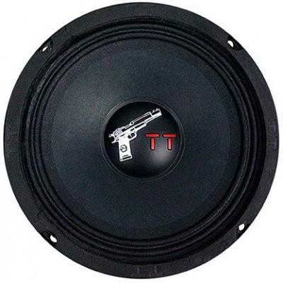 Эстрадная акустика URAL TT 165