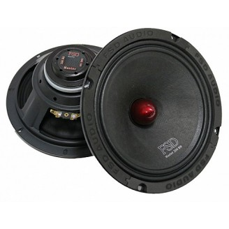 Эстрадная акустика FSD audio MASTER 200BN