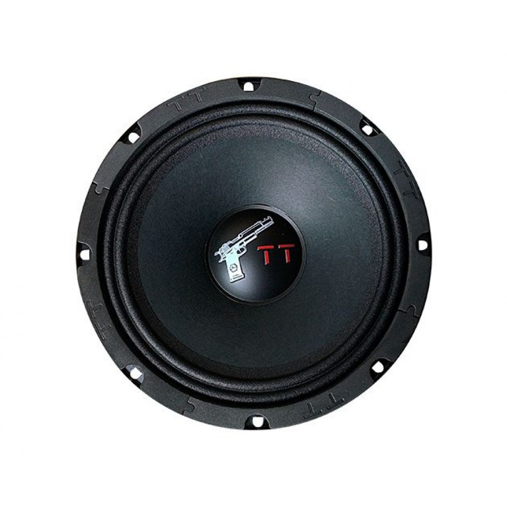 Эстрадная акустика URAL TT 200
